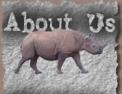 About us rhino image