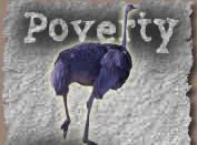 Poverty ostrich image