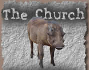 The church warthog image